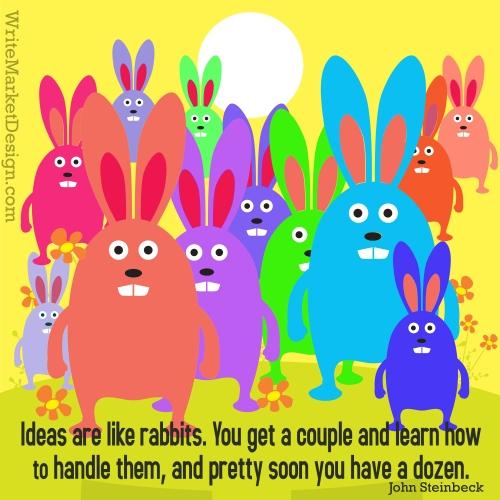 rabbit-021114-ykwv1
